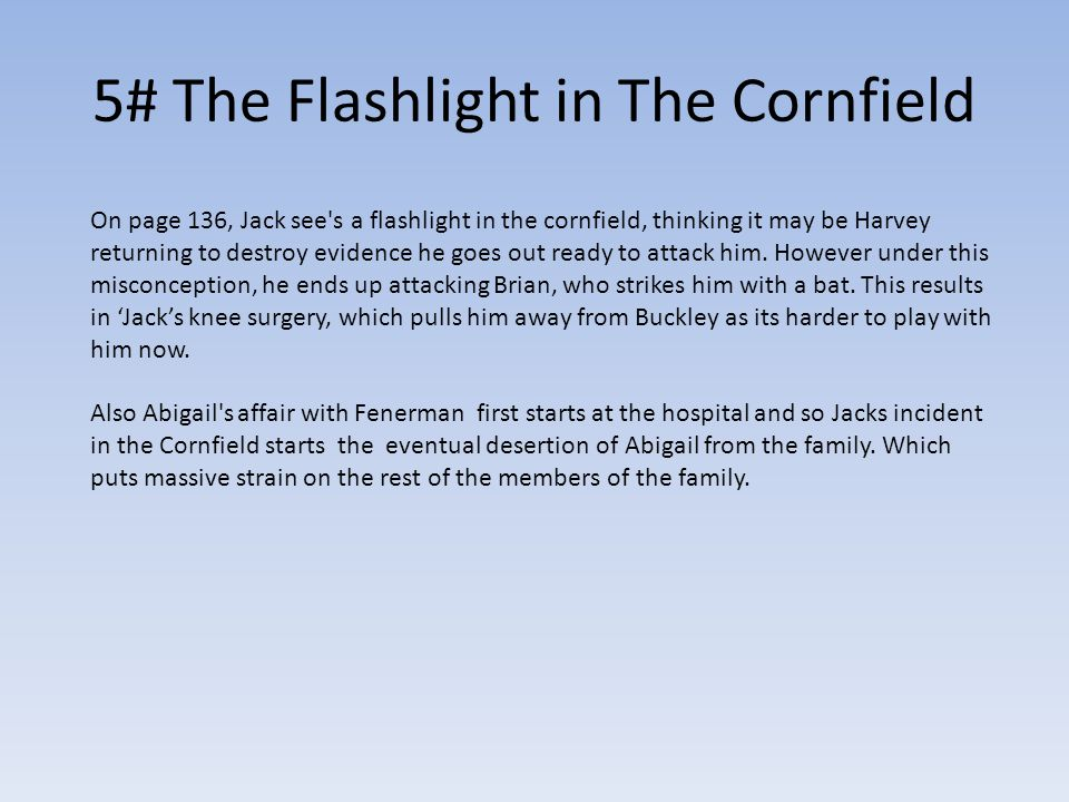 5# The Flashlight in The Cornfield