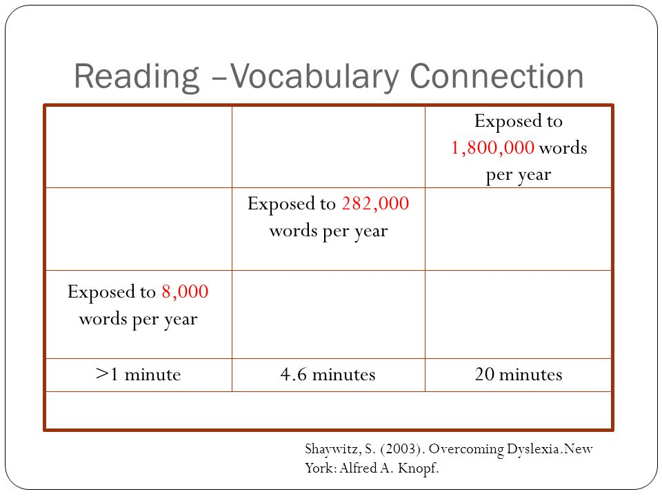 Reading –Vocabulary Connection