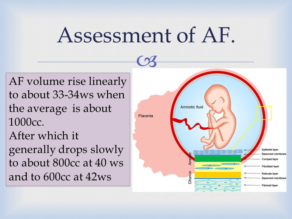 Assessment of AF. AF volume rise linearly to about 33-34ws when the average is about 1000cc.