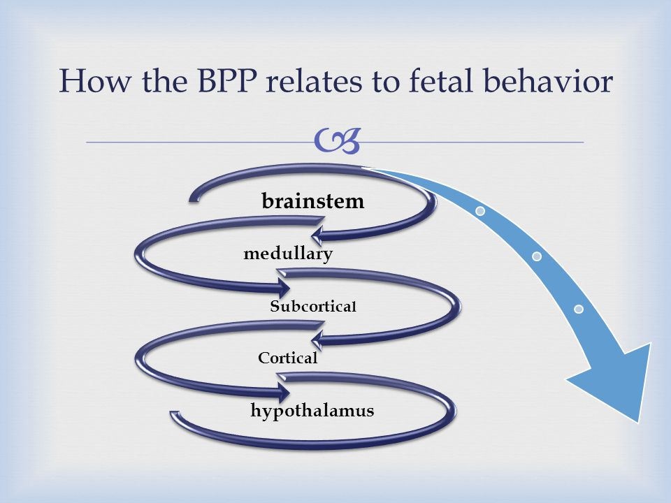 How the BPP relates to fetal behavior