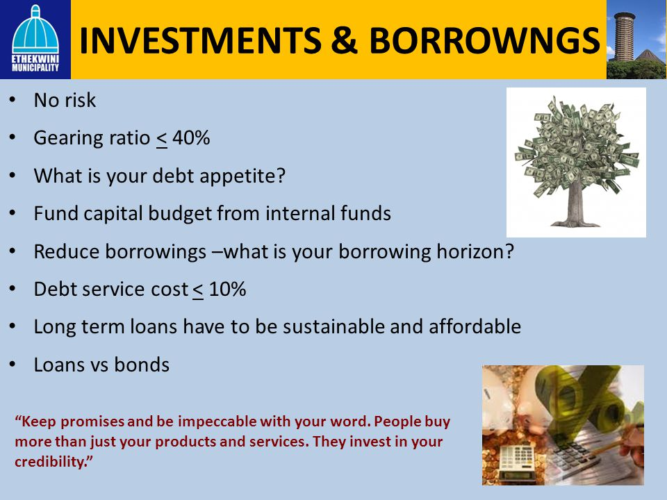 INVESTMENTS & BORROWNGS