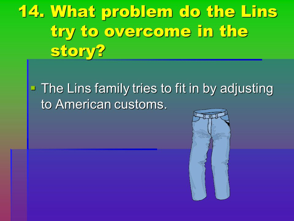 14. What problem do the Lins try to overcome in the story