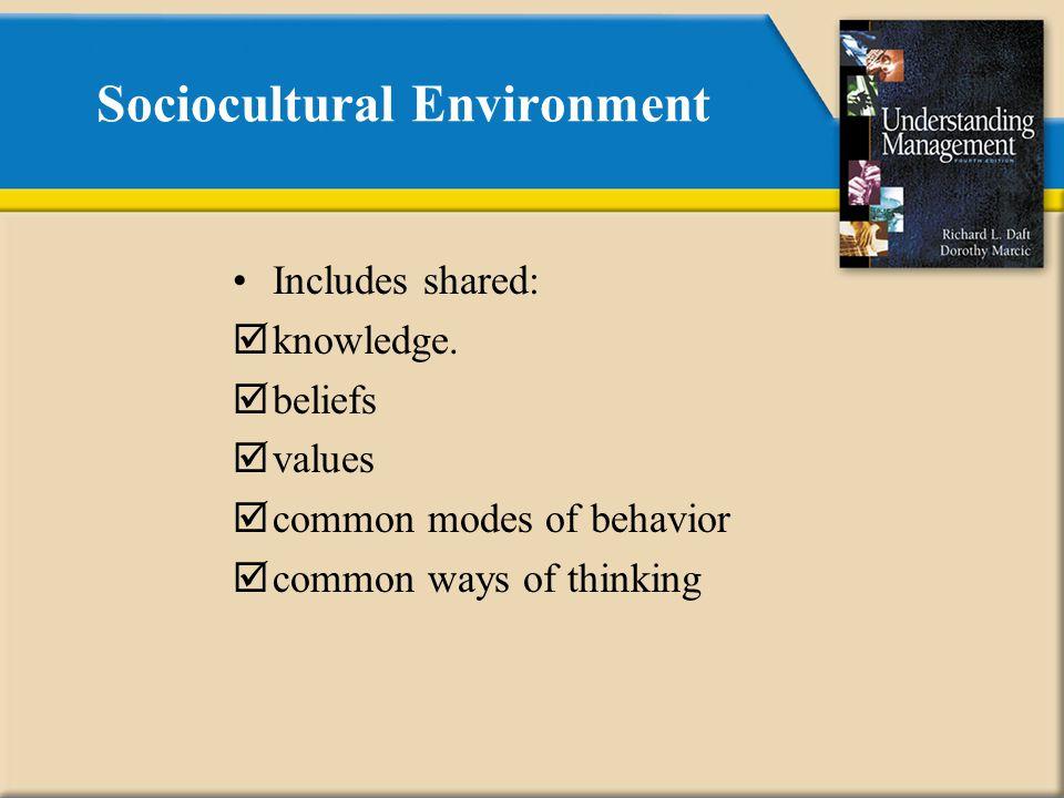 Sociocultural Environment