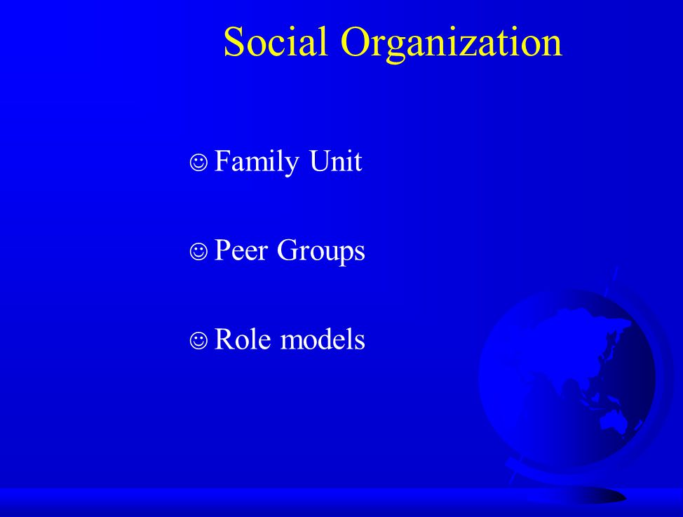 Social Organization Family Unit Peer Groups Role models