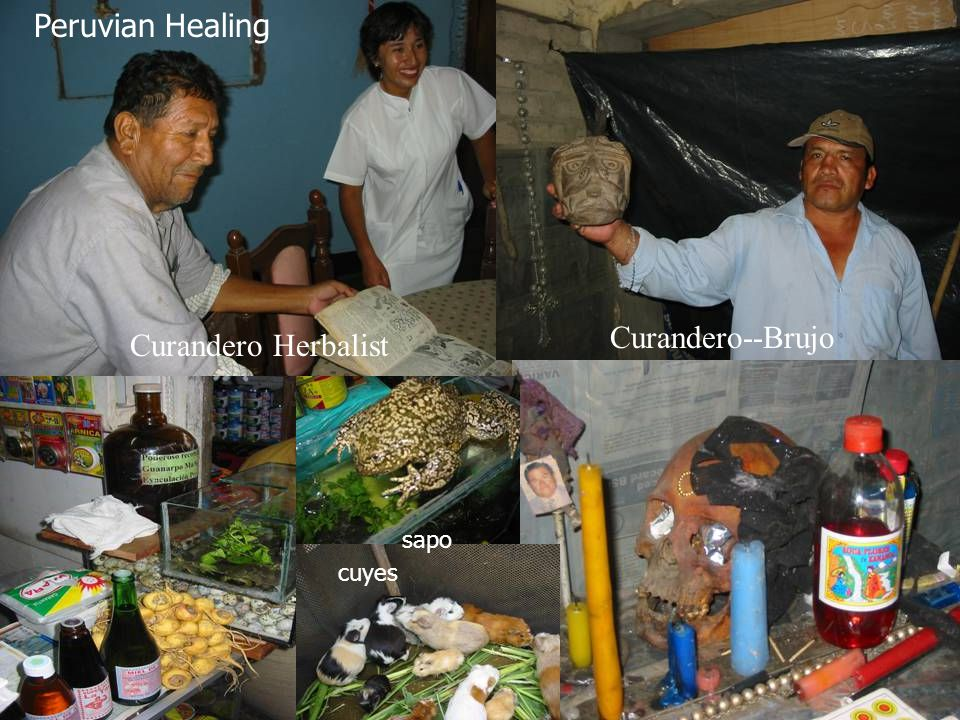 Peruvian Healing Curandero--Brujo Curandero Herbalist sapo cuyes
