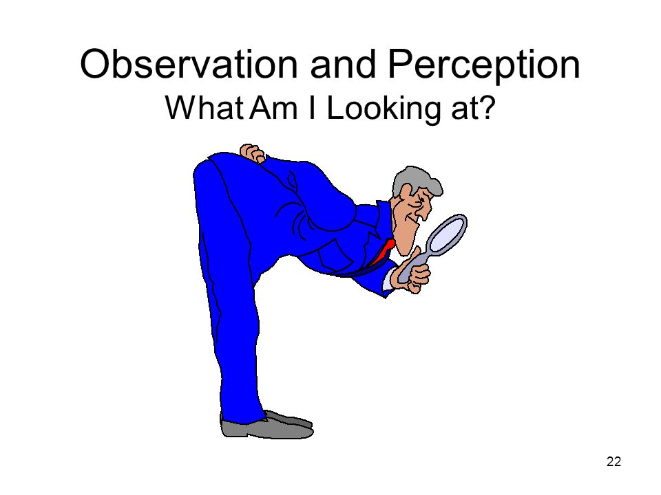 Observation and Perception What Am I Looking at
