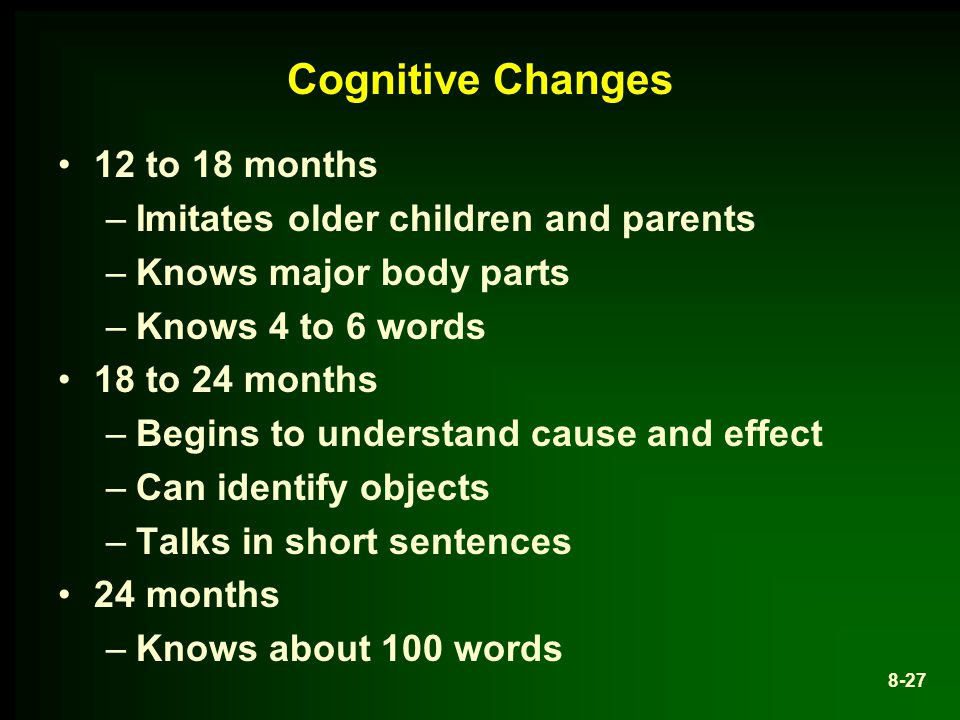 Cognitive Changes 12 to 18 months Imitates older children and parents