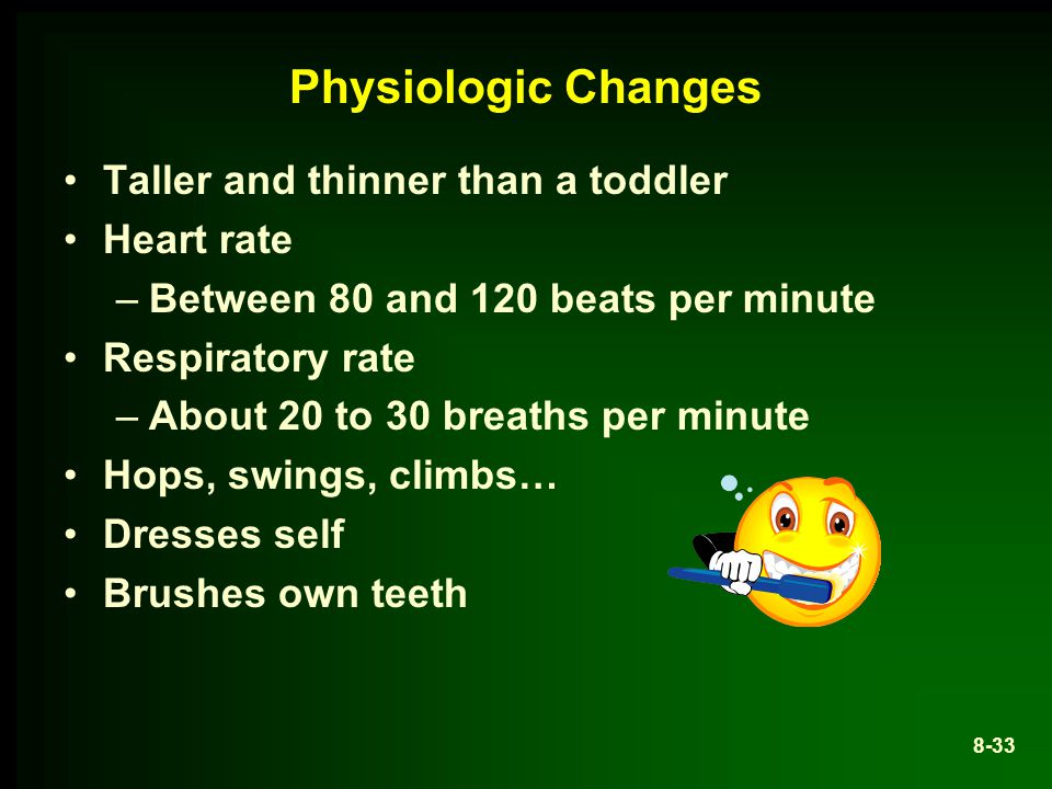 Physiologic Changes Taller and thinner than a toddler Heart rate