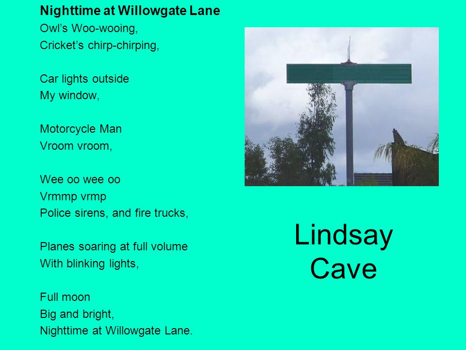 Lindsay Cave Nighttime at Willowgate Lane Owl's Woo-wooing,