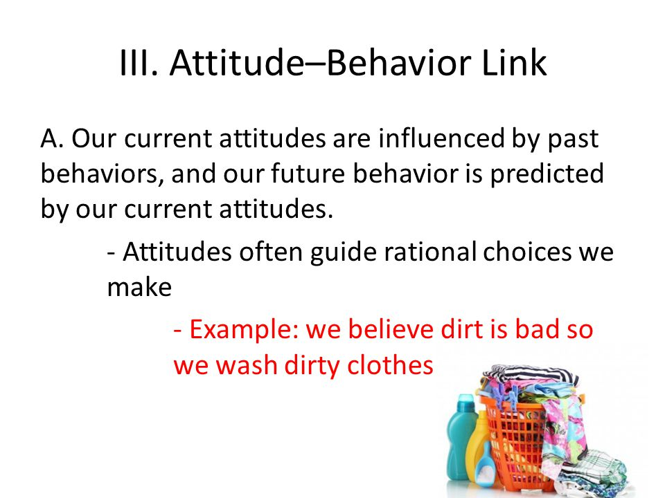 III. Attitude–Behavior Link