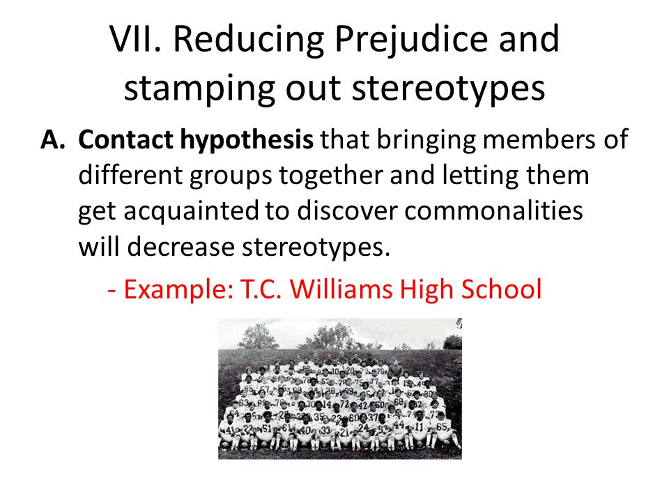 VII. Reducing Prejudice and stamping out stereotypes