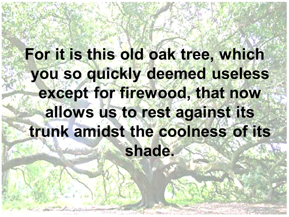 For it is this old oak tree, which you so quickly deemed useless except for firewood, that now allows us to rest against its trunk amidst the coolness of its shade.