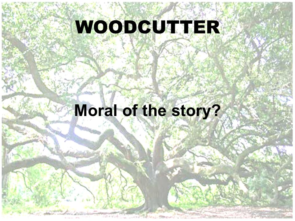 WOODCUTTER Moral of the story