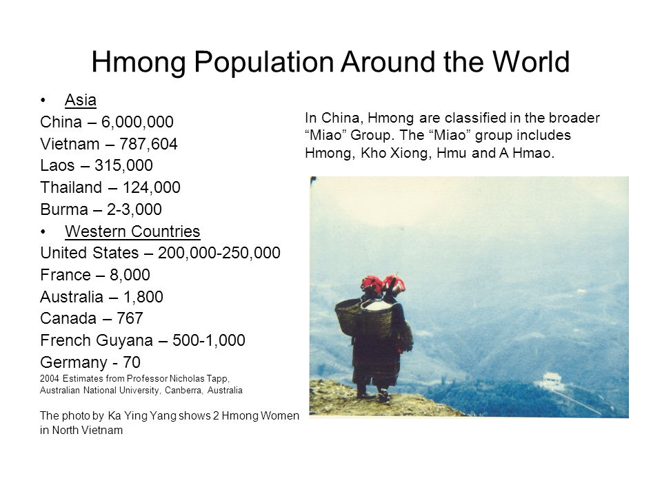 Hmong Population Around the World
