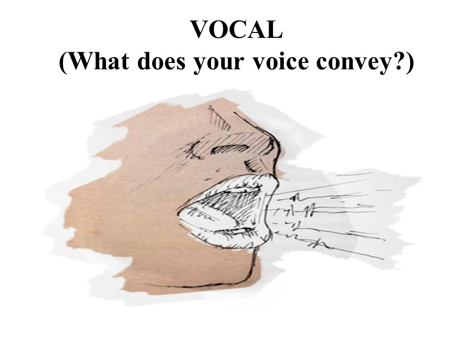 VOCAL (What does your voice convey )
