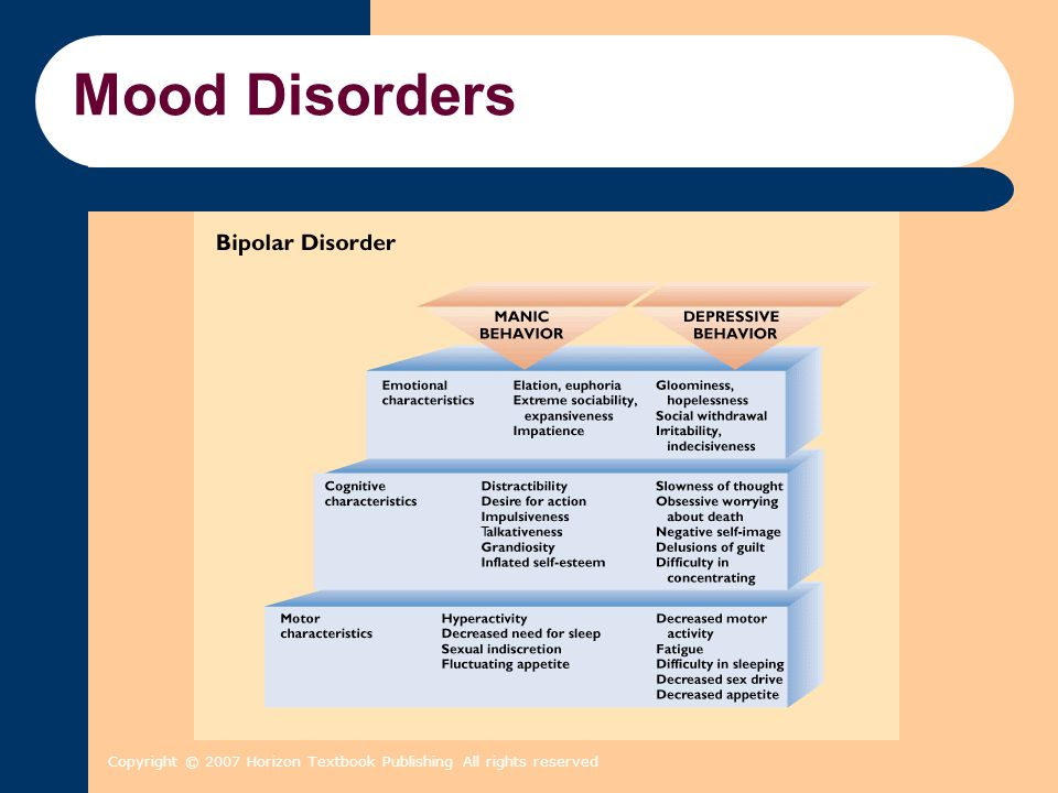 Mood Disorders Copyright © 2007 Horizon Textbook Publishing All rights reserved 2 2