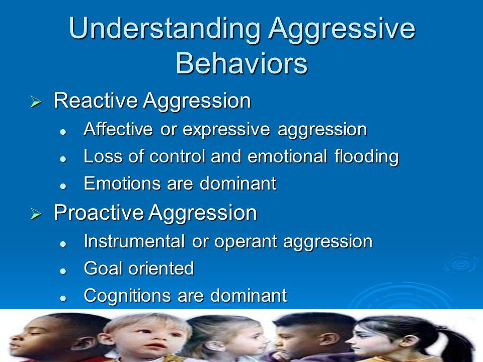 Understanding Aggressive Behaviors