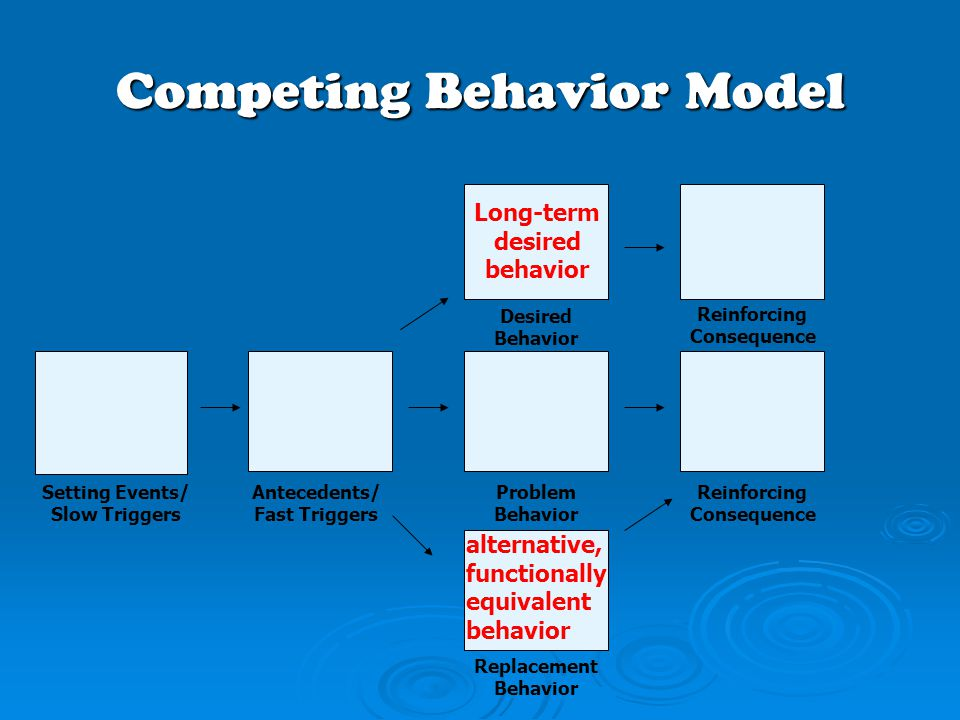 Competing Behavior Model