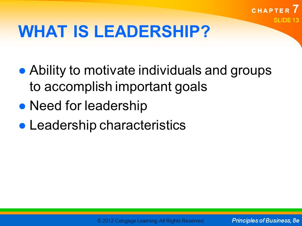 WHAT IS LEADERSHIP Ability to motivate individuals and groups to accomplish important goals. Need for leadership.