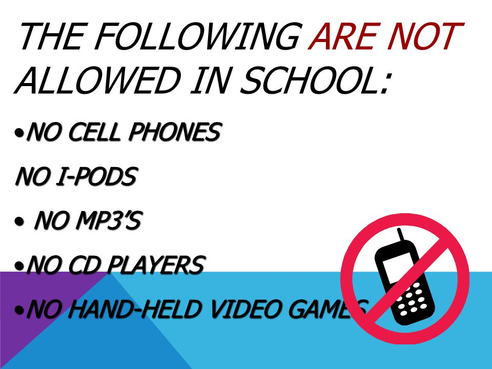 THE FOLLOWING ARE NOT ALLOWED IN SCHOOL: