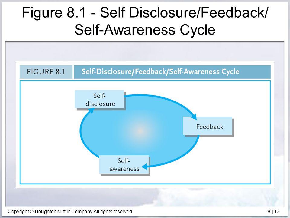 Figure 8.1 - Self Disclosure/Feedback/ Self-Awareness Cycle