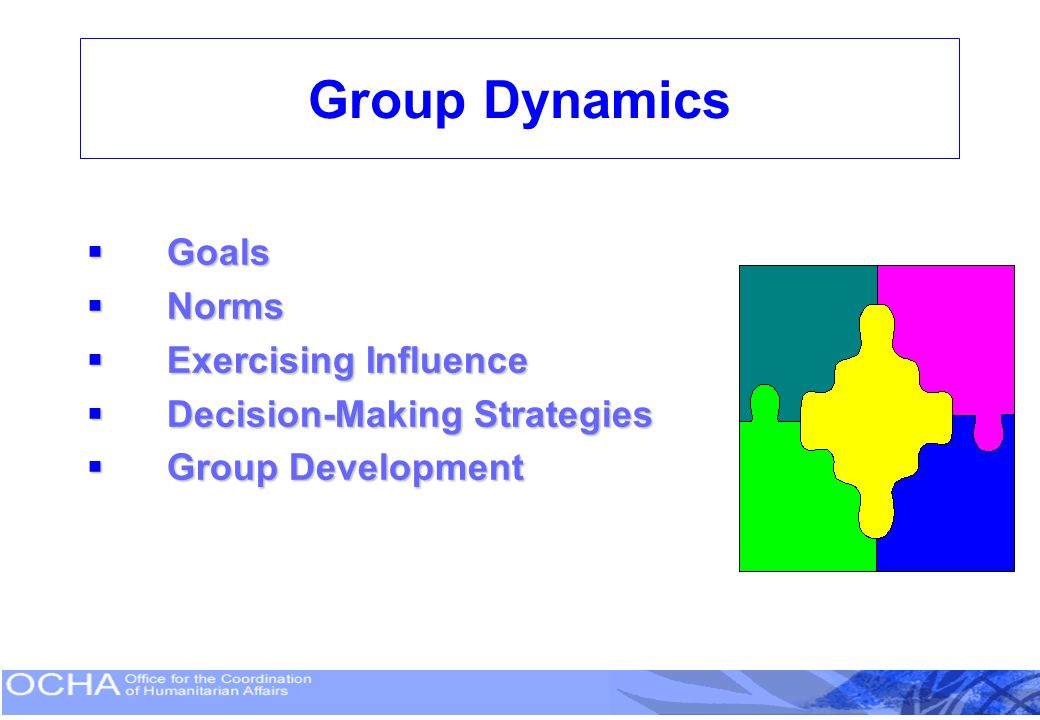 Group Dynamics Goals Norms Exercising Influence
