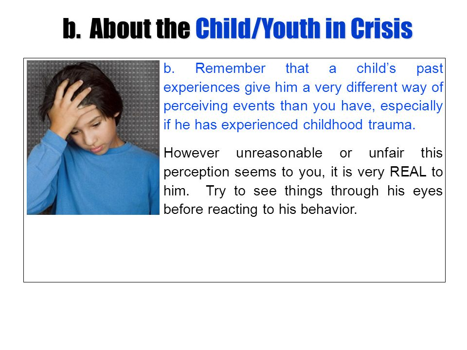 b. About the Child/Youth in Crisis