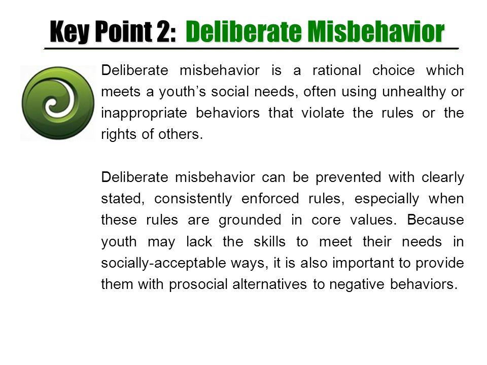 Key Point 2: Deliberate Misbehavior