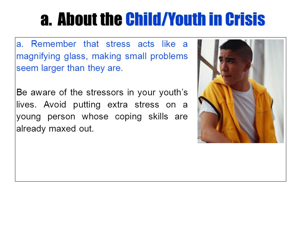 a. About the Child/Youth in Crisis