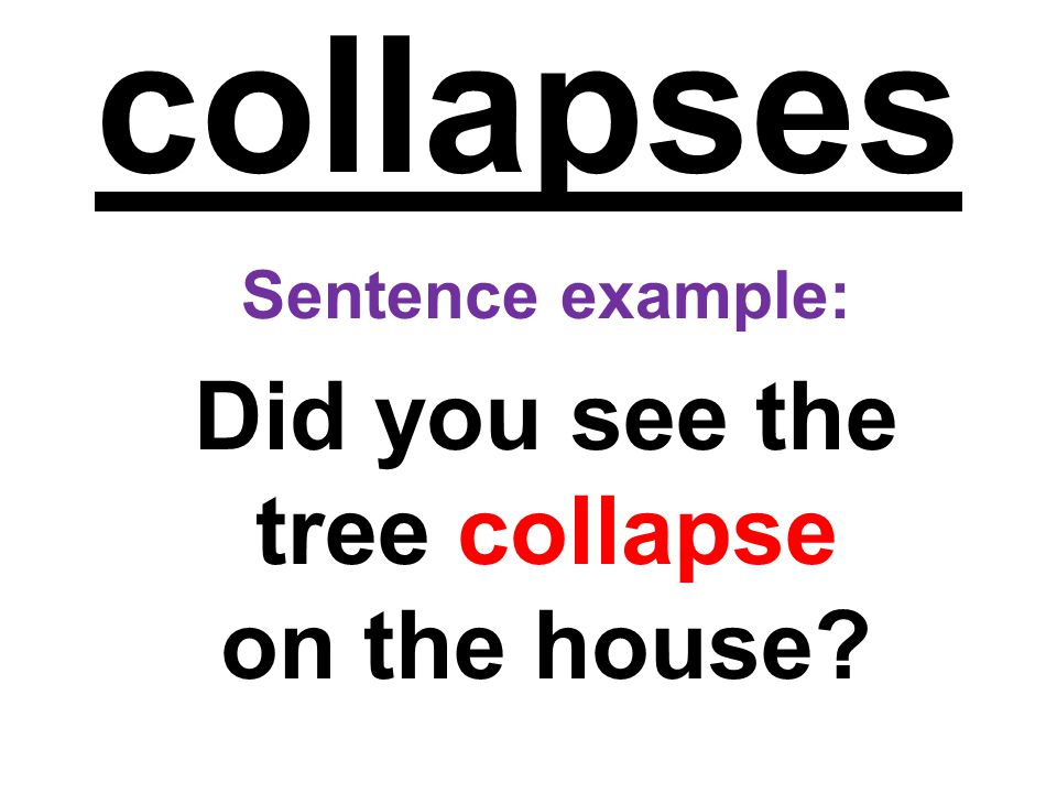 Did you see the tree collapse on the house
