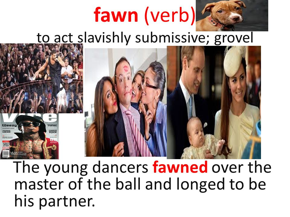 fawn (verb) to act slavishly submissive; grovel