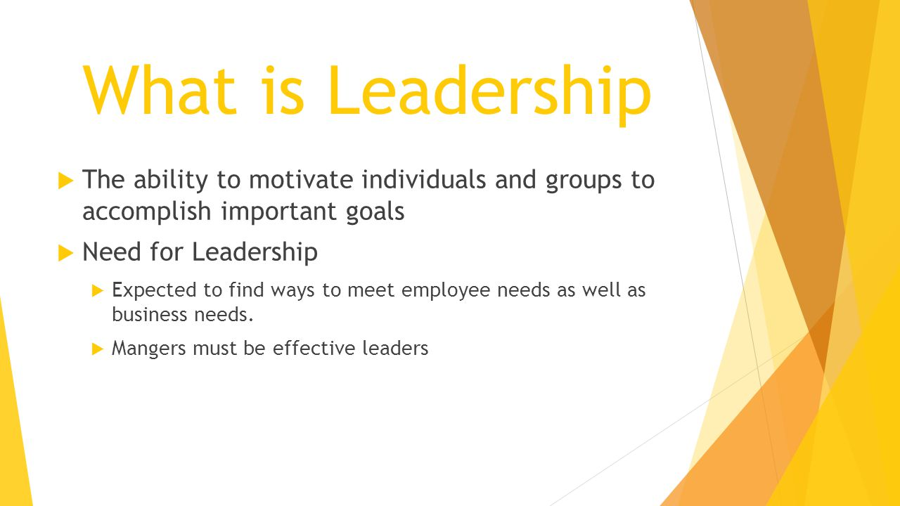 What is Leadership The ability to motivate individuals and groups to accomplish important goals. Need for Leadership.
