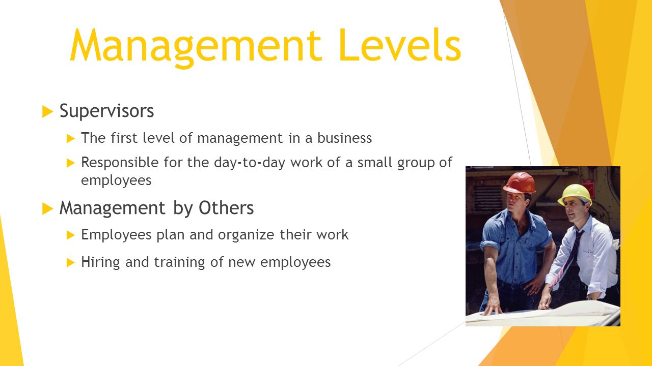 Management Levels Supervisors Management by Others