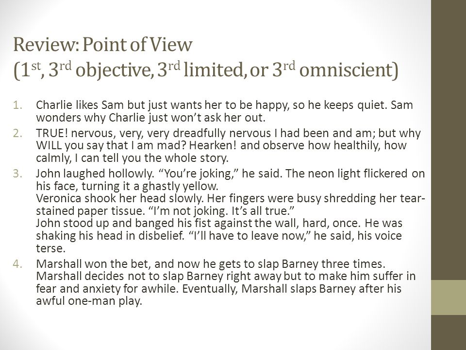 Review: Point of View (1st, 3rd objective, 3rd limited, or 3rd omniscient)