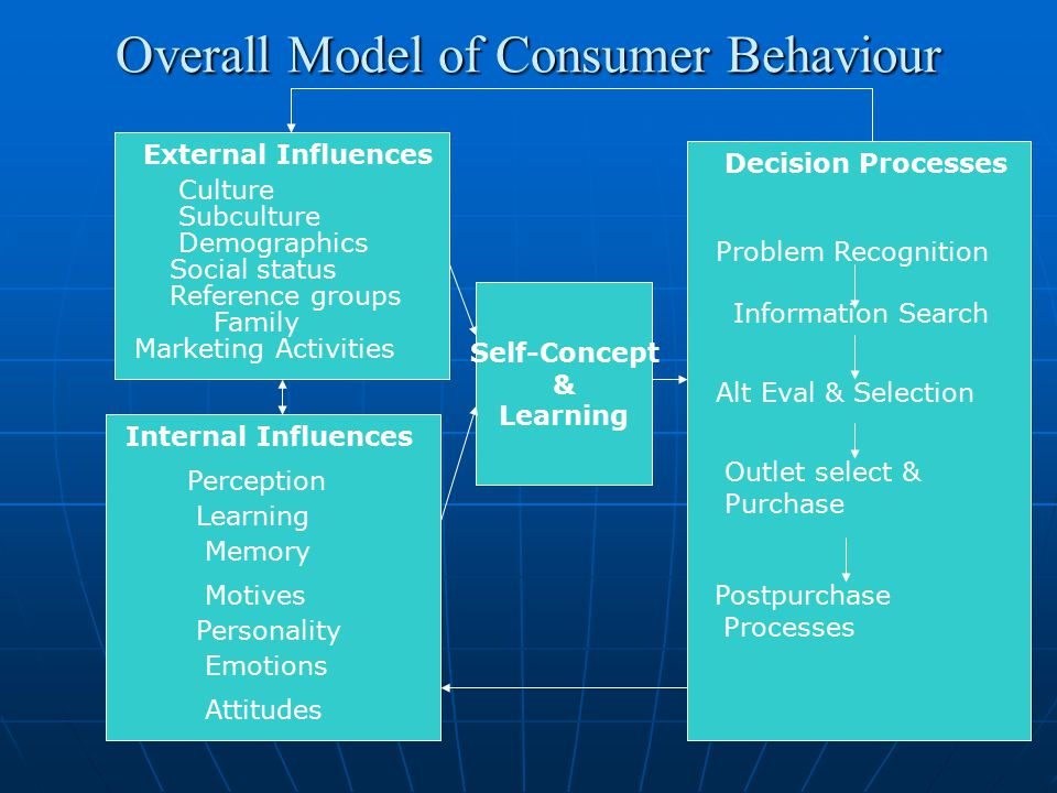 Overall Model of Consumer Behaviour