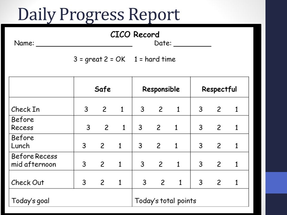 Daily Progress Report MiBLSi powerpoint, 2009