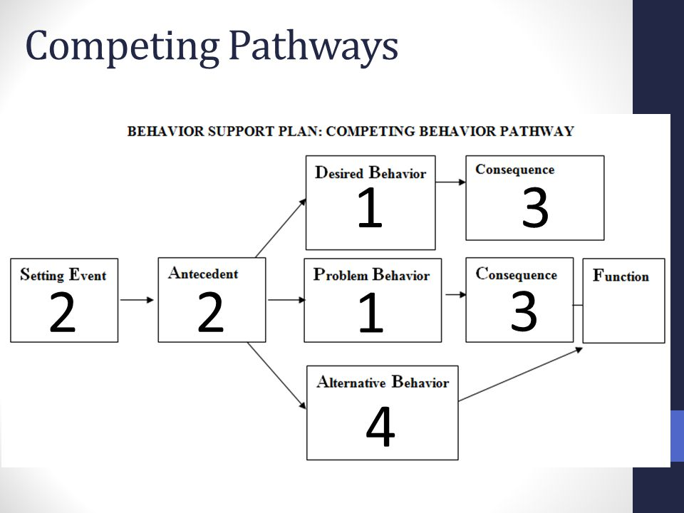 Competing Pathways 1 3 2 2 1 3 4