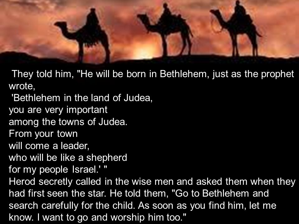 They told him, He will be born in Bethlehem, just as the prophet wrote,