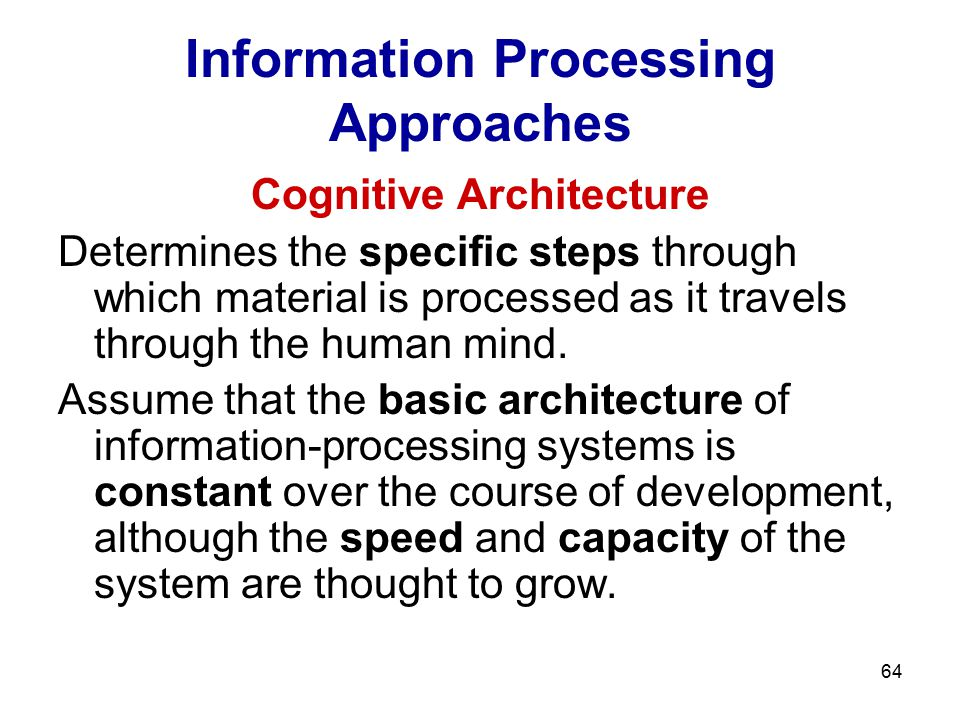 Information Processing Approaches