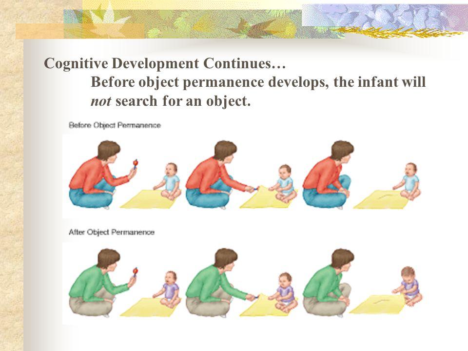 Cognitive Development Continues…