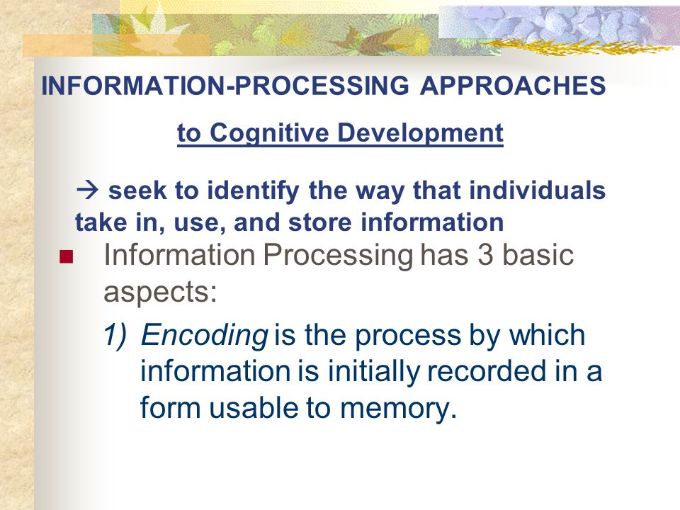 INFORMATION-PROCESSING APPROACHES to Cognitive Development