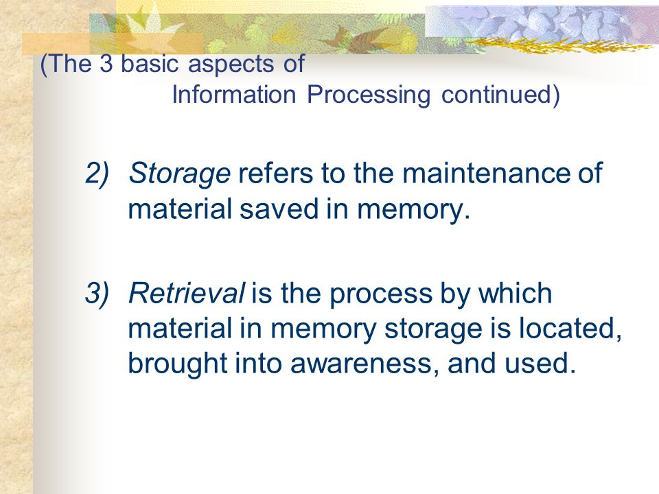 (The 3 basic aspects of Information Processing continued)