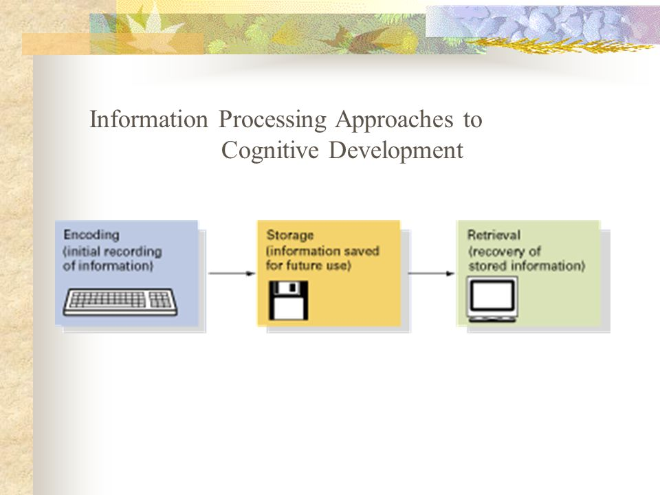 Information Processing Approaches to Cognitive Development