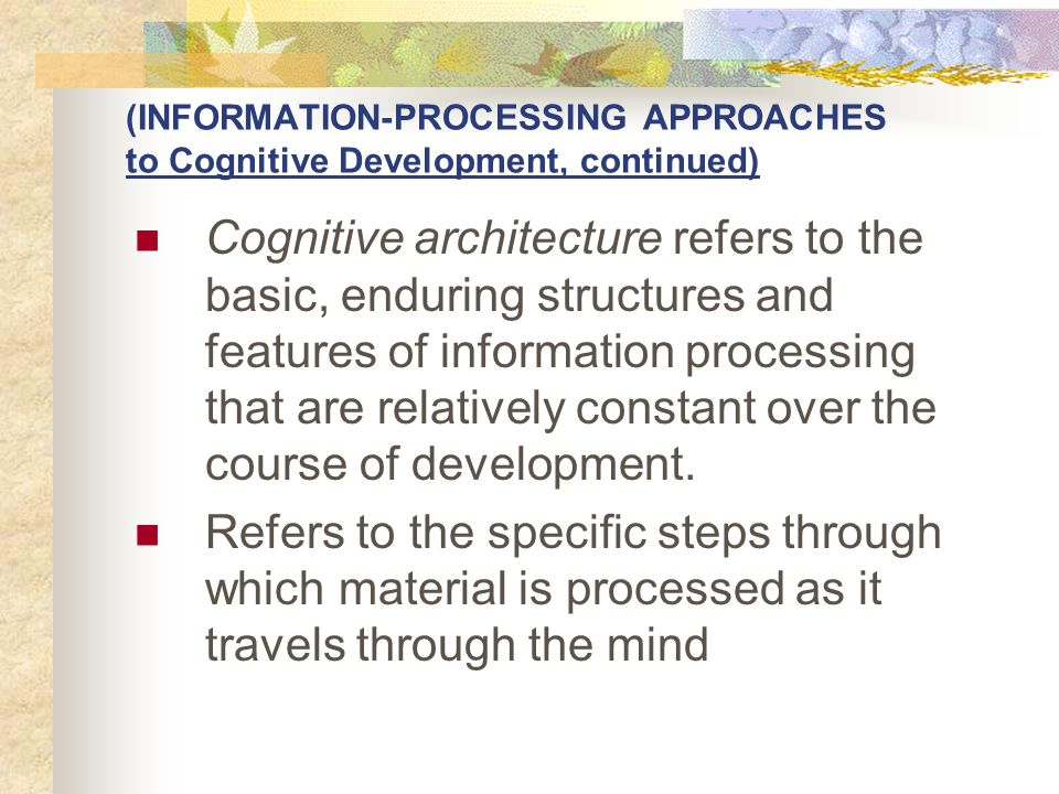 (INFORMATION-PROCESSING APPROACHES to Cognitive Development, continued)