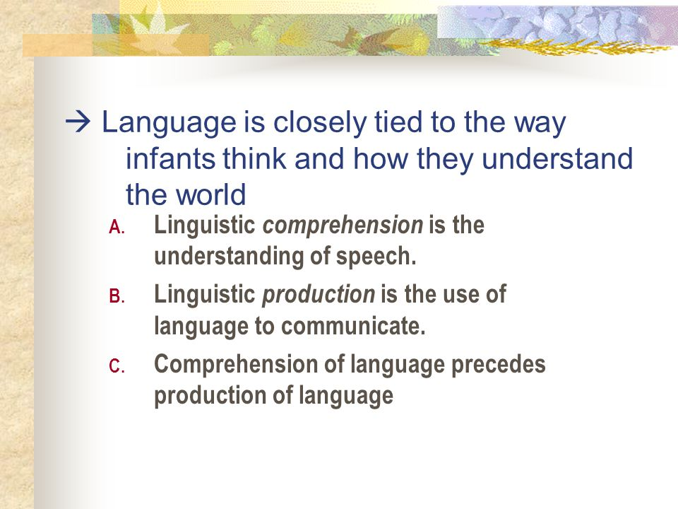  Language is closely tied to the way infants think and how they understand the world