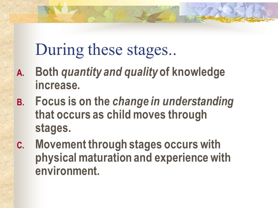 During these stages.. Both quantity and quality of knowledge increase.