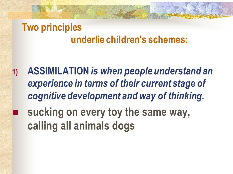Two principles underlie children s schemes: