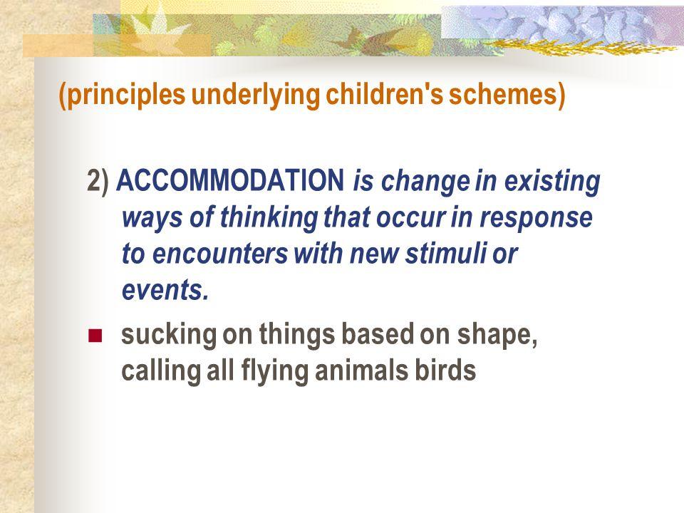 (principles underlying children s schemes)
