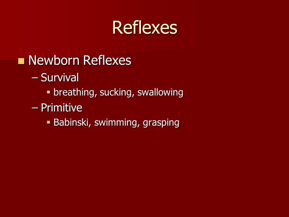 Reflexes Newborn Reflexes Survival Primitive