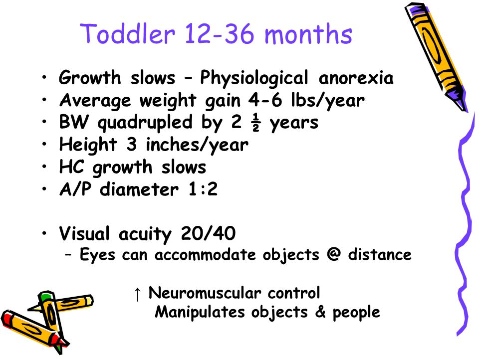 Toddler 12-36 months Growth slows – Physiological anorexia